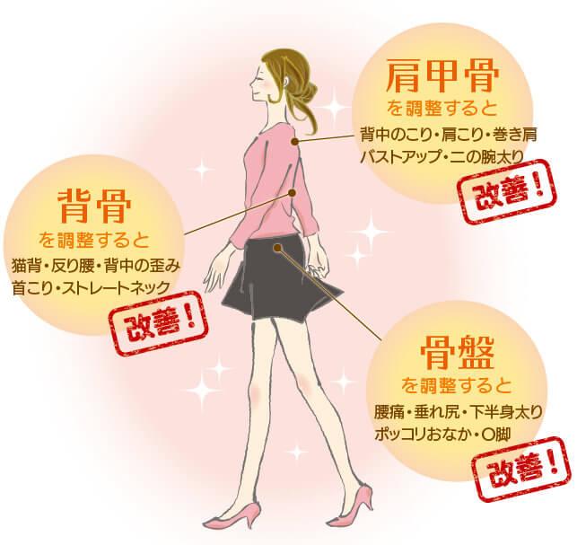 姿勢矯正・骨盤矯正・肩甲骨はがしの効果と改善ポイント